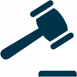 law-compliance-icon